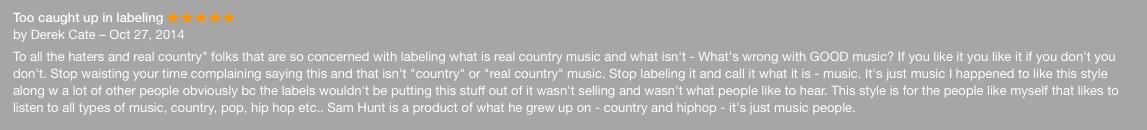 Dumb Sam Hunt Comment 1