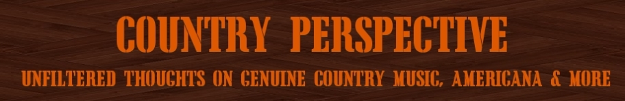 Country Perspective Banner 2